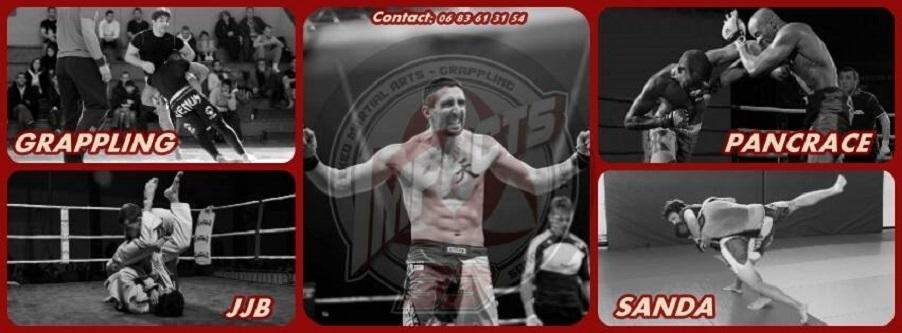 Affiche MMA